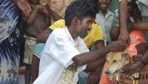 Мъж се жени за куче