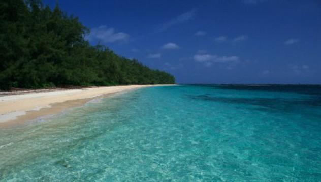 Островът на изкушението...