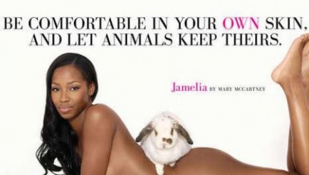 PETA vs. Armani