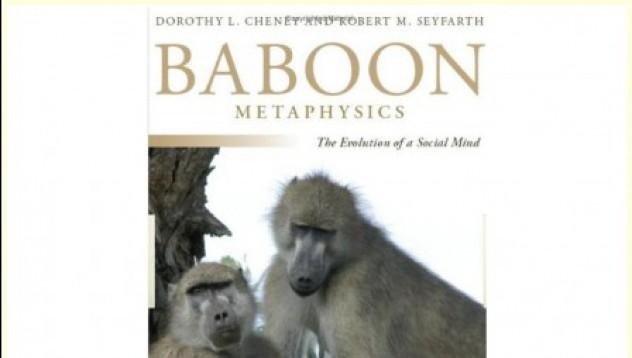 Най-странната книга