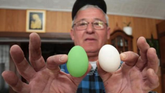 Кокошката със зелените яйца
