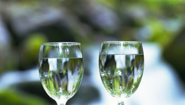 Супер вино от Шонбрюн