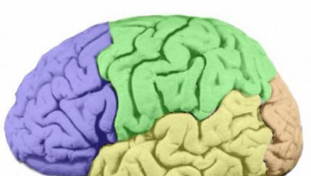 Уголеми си мозъка