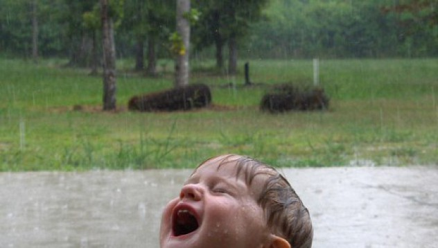 Дъждопиене