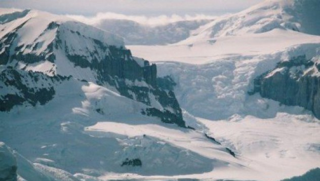 Антарктическо масълце