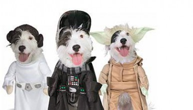 Кучето ти става Йода!