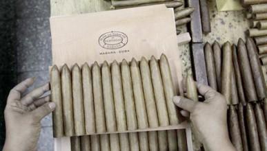Фест на пурите в Куба!