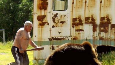 Къде почиват мечките