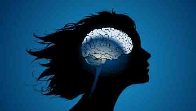 Женските мозъци