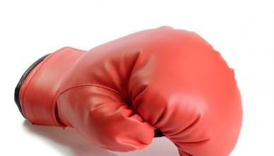 За Кобрата и бокса