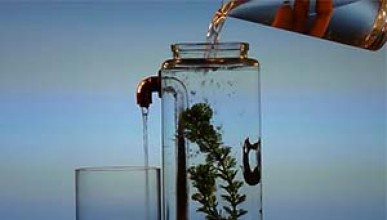 Самопочистващ се аквариум