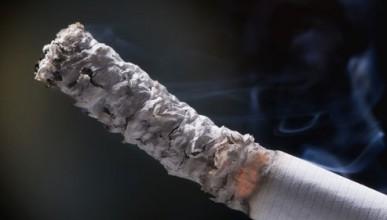 Мнение за цигарите