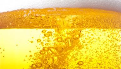 Международният ден на бирата