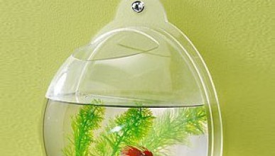 Стенен аквариум