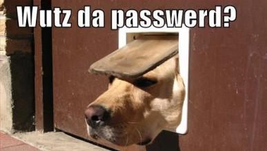 Най-използваните пароли