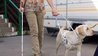 Защо да наемеш сляп човек на работа