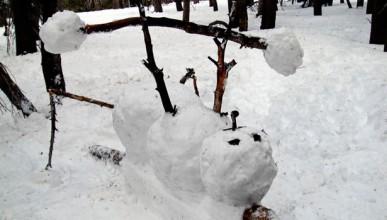 Снегоринен туитър