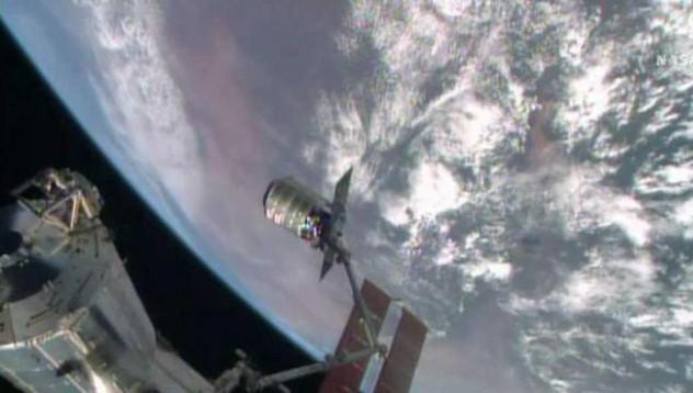 Руски космонавти откриха живот в космоса