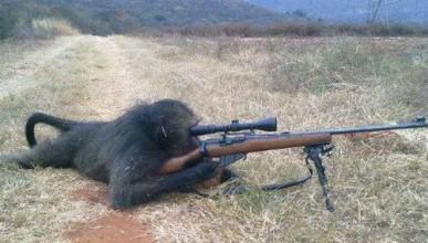 Терористите, на които не може да се има доверие