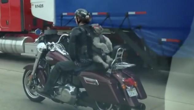 Не сте виждали по-готино куче на мотор