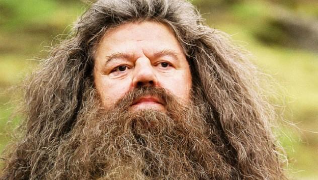Вече можеш да си присадиш брада