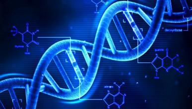 Учените могат да определят сексуалната ориентация с един поглед на ДНК-то