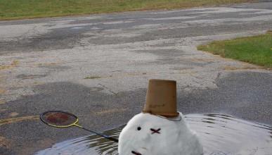 Снегоразтапящият се туитър