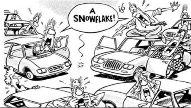 Снежният туитър разтапя асфалта
