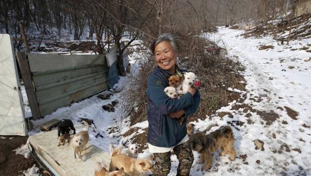 Жена живее с 200 кучета