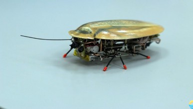Роботизирана хлебарка ще помага на пожарникарите