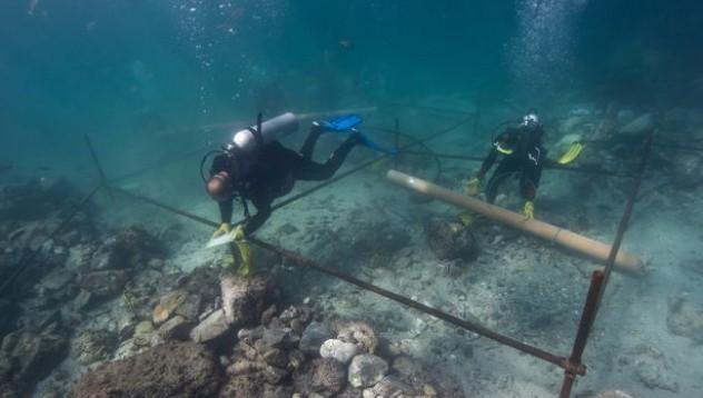 Откриха кораб на Васко да Гама