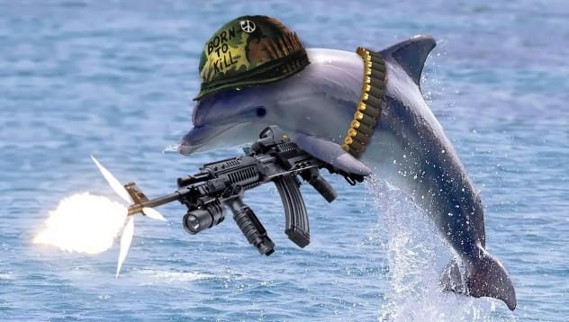 Морската пехота на Русия си купува делфини