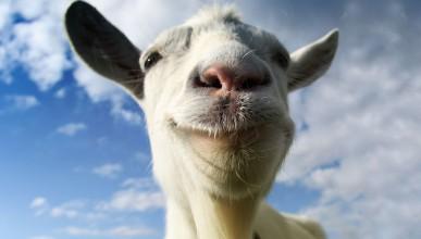 Сексолог лекува импотентност с тестис от козел