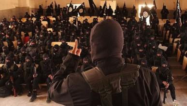 Социология на тероризма