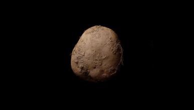 Снимка на картоф за 1.08 милиона долара