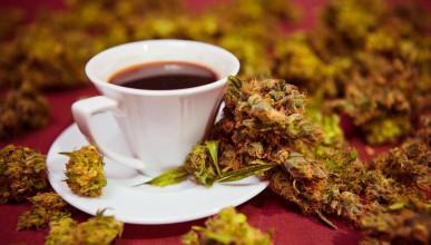 Кафе с марихуана за добро утро