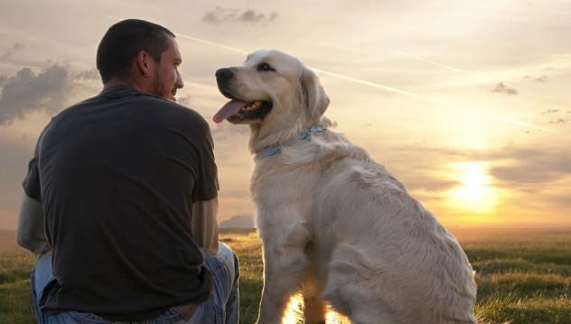 Куче застреля половинката на стопанина си