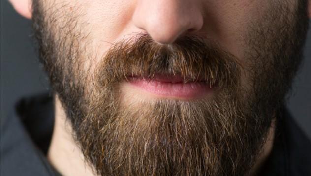 5 съвета за брадатковци
