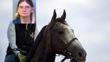 Полицаи написаха първа глоба за яздене на кон в нетрезво състояние
