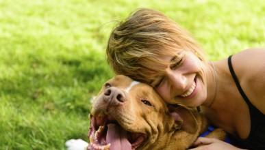 Защо кучето е толкова полезно за човека