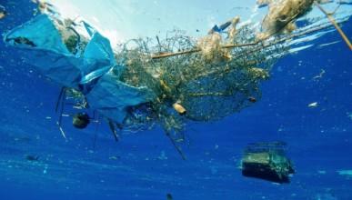 Учени откриха ензим, който разрушава пластмаса