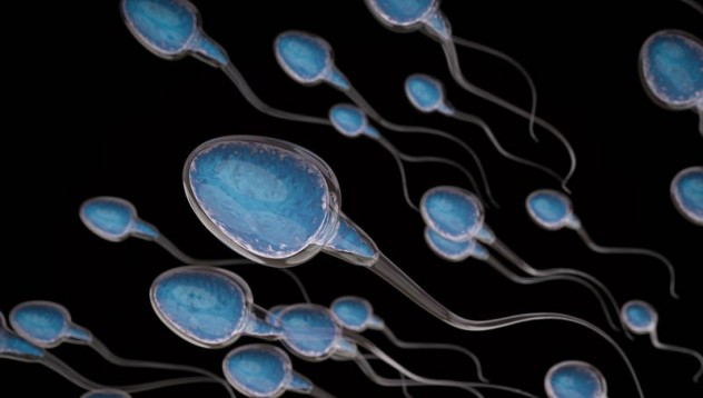 Защо астронавтите получиха 12 контейнера със сперма в космоса