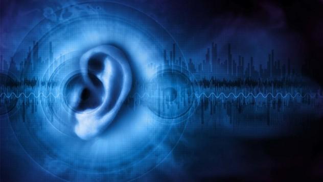 Този протеин може да излекува човешкото ухо