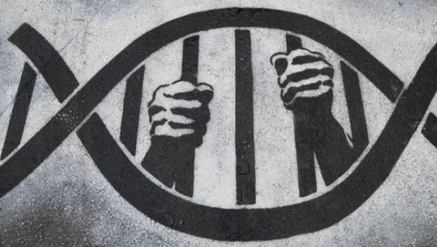 Кувейт ще вземе ДНК проба от всичките си жители