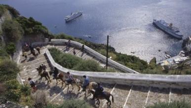 Гърция забранява на дебелите туристи да яздят магарета